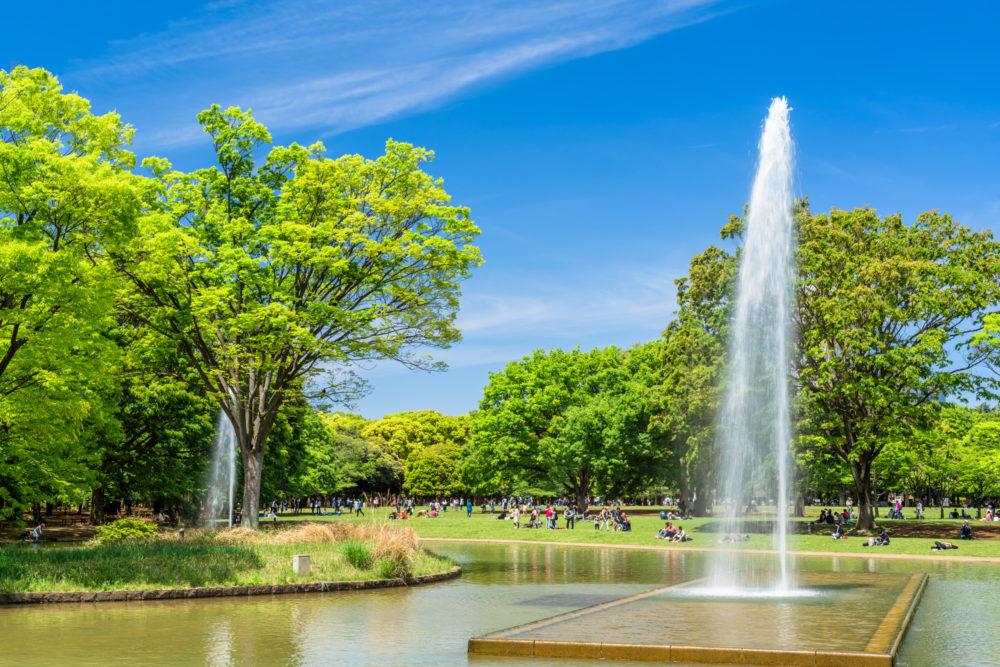 春の代々木公園