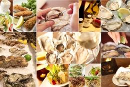 生牡蠣が半額!人気のオイスターバー「Ostrea(オストレア」 都内店舗でフェア開催