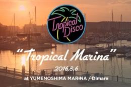 この夏注目のイベント「Tropical Disco」、8月開催は豊洲⇒夢の島に