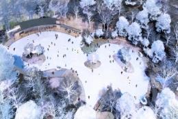 今年の冬は軽井沢へ。 「森を感じるスケートリンク」が11月18日オープン。